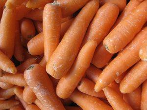 can rats eat carrots