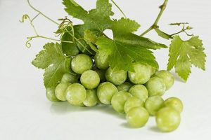can rats eat grapes