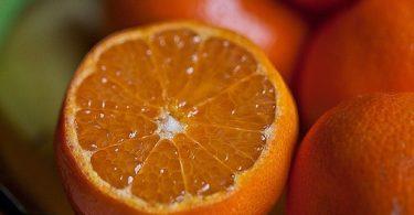 can rats eat oranges