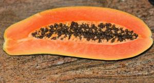 can dogs eat papaya