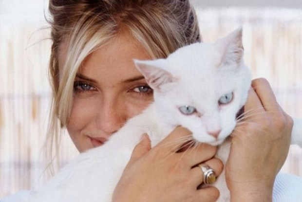 15 Celebrities Who Love Cats