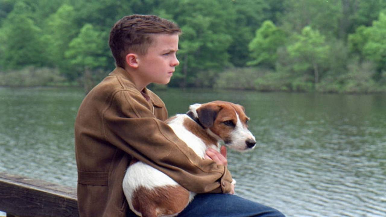 Top 10 Dog Movies