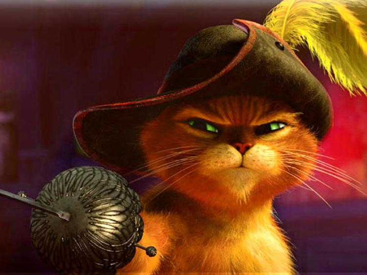 Top Cat Cartoon Characters Names