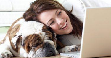 Best Dog Blogs 2017