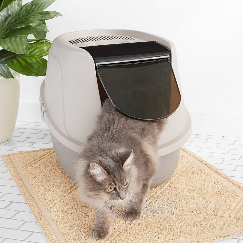 Best Dog Proof Litter Box