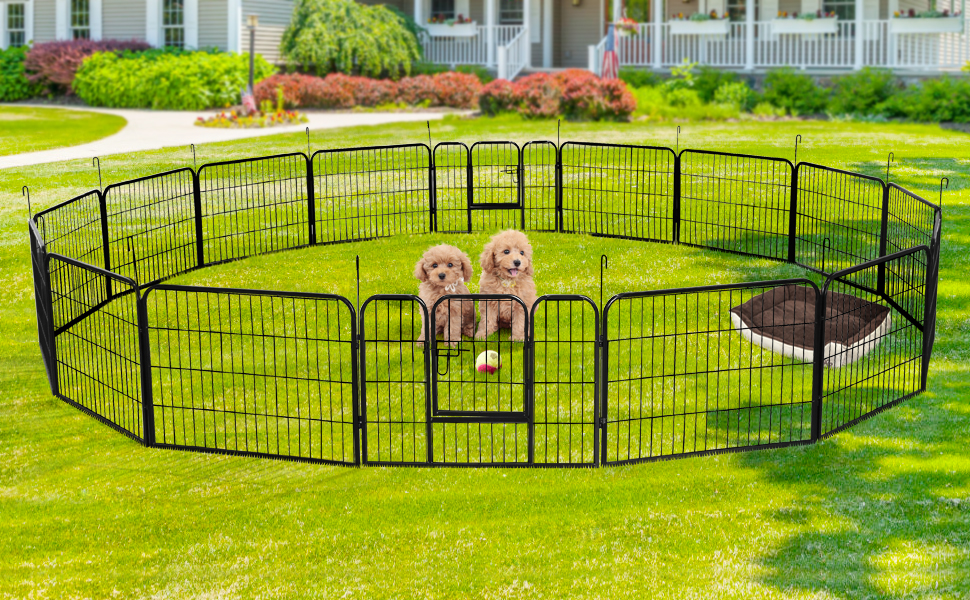 The Best Portable Dog Fence To Buy In July 2020